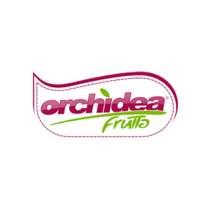 Orchidea-trasp